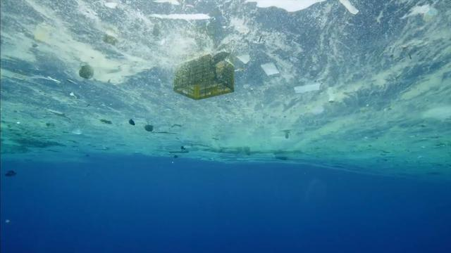 画像: 映画『プラスチックの海』予告編 www.youtube.com