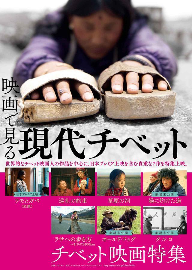 画像: 近年注目されるチベット映画を特集!ソンタルジャ監督やペマ・ツェテン監督などの劇場未公開作などを中心に「映画で見る現代チベット」開催!