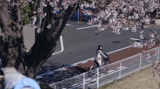 画像2: ©AyaMIYAZAKI