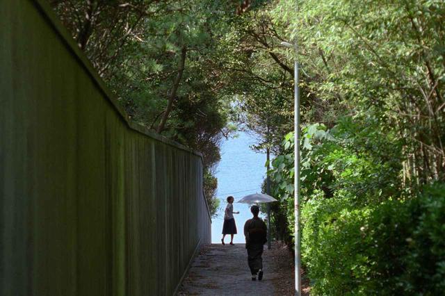 """画像14: ©2020""""A Garden of the Camellias"""" film partners"""