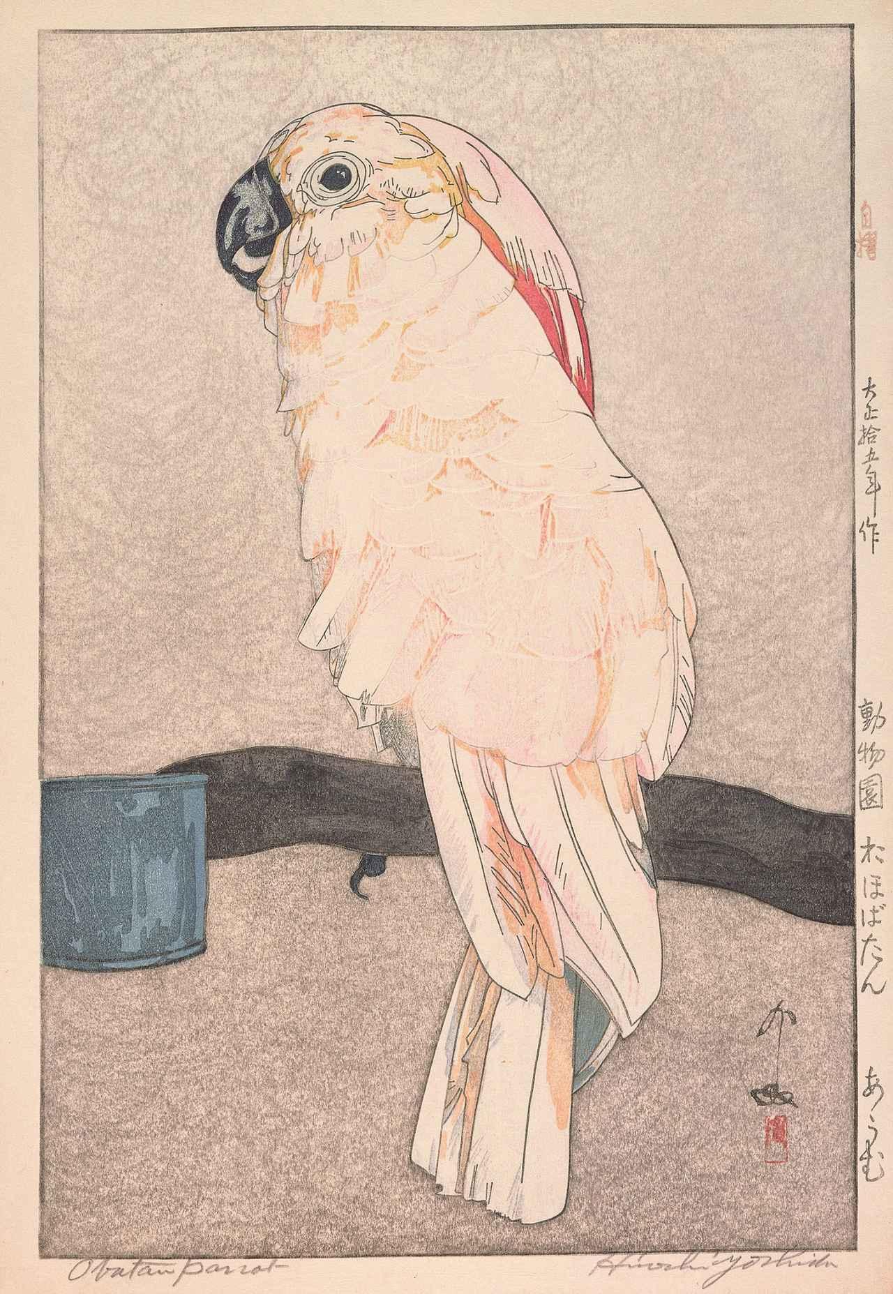 画像: 《動物園 於ほばたん あうむ》 大正15(1926)年 木版、紙 37.1×24.7cm