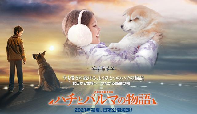 画像: 日露共同作品映画『ハチとパルマの物語』公式サイト