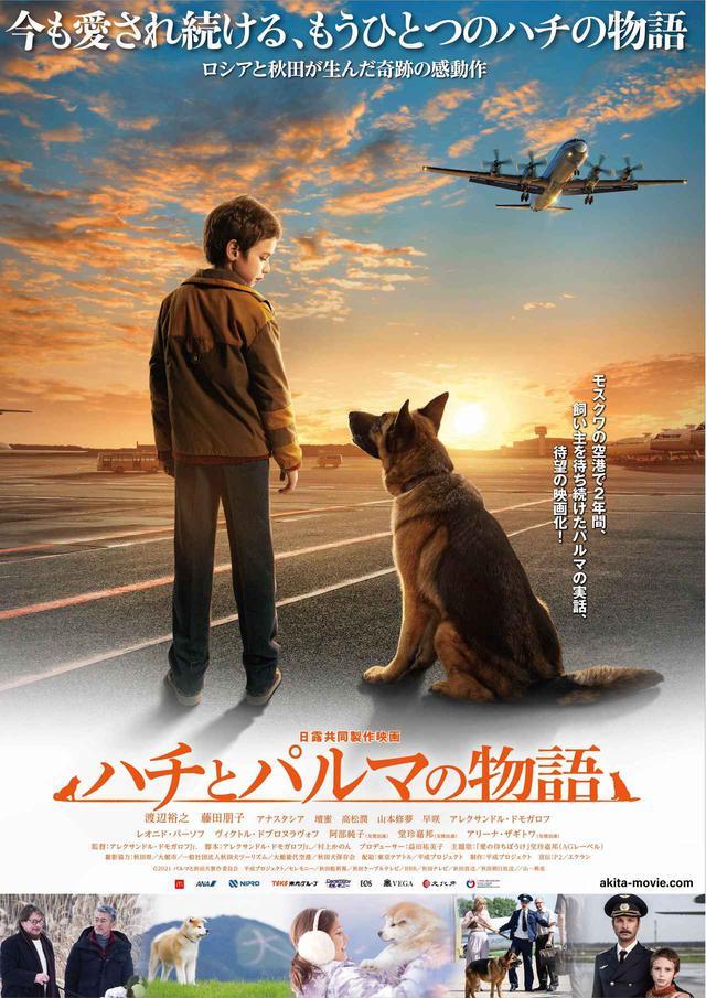 画像: ©2021 パルマと秋田犬製作委員会