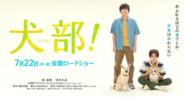 画像: 映画『犬部!』公式サイト
