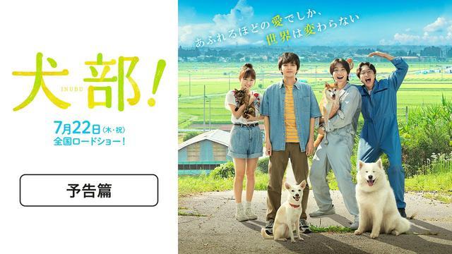 画像: 『犬部!』予告篇【7月22日(木祝)公開】 youtu.be