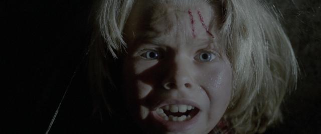 画像3: イタリア恐怖映画界のレジェンド、ルチオ・フルチの傑作13選を特集上映!