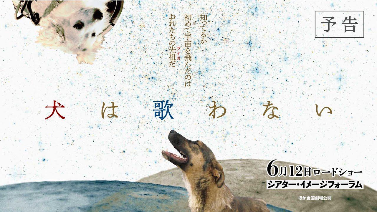 画像: 映画『犬は歌わない』予告編 www.youtube.com