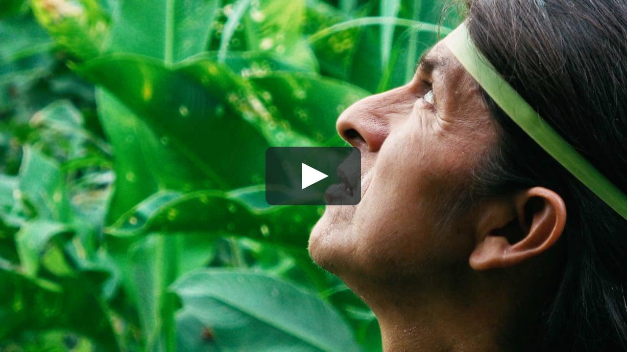 画像1: Kanarta: Alive in Dreams (Official Trailer 2020 Full HD) vimeo.com