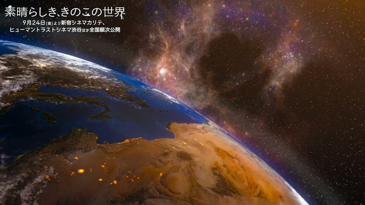 画像: 映画『素晴らしき、きのこの世界』冒頭映像 youtu.be