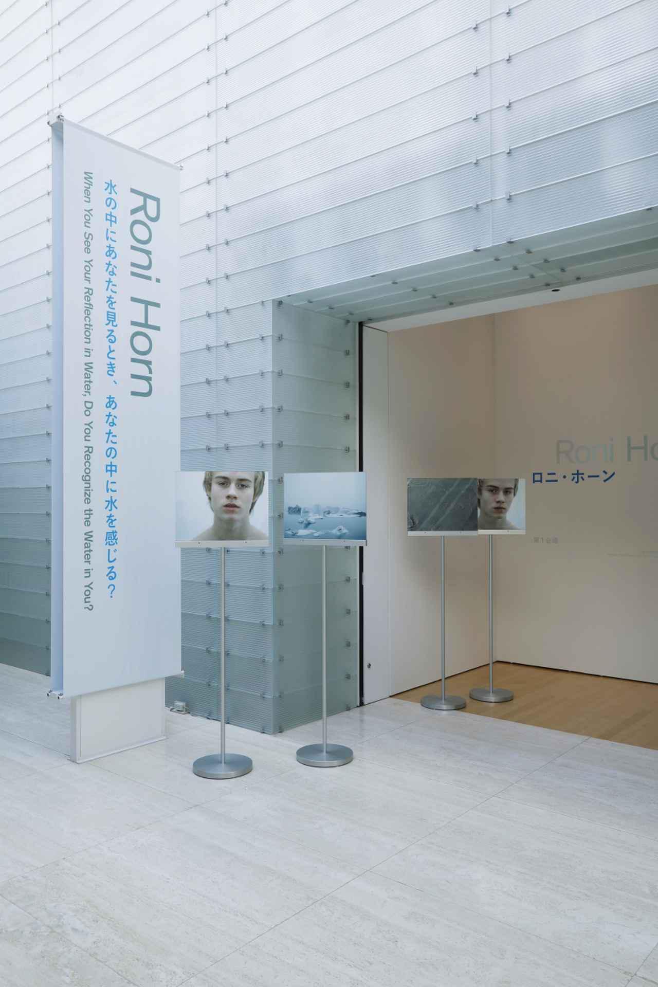 画像: 《水による疑い(どうやって)》(部分) 2003-2004年12点のピグメント・プリント(6組)メッキされたアルミニウムの支柱、アクリルのグレージングCourtesy of the artist and Hauser &Wirth © RoniHorn Photo: Koroda Takeru