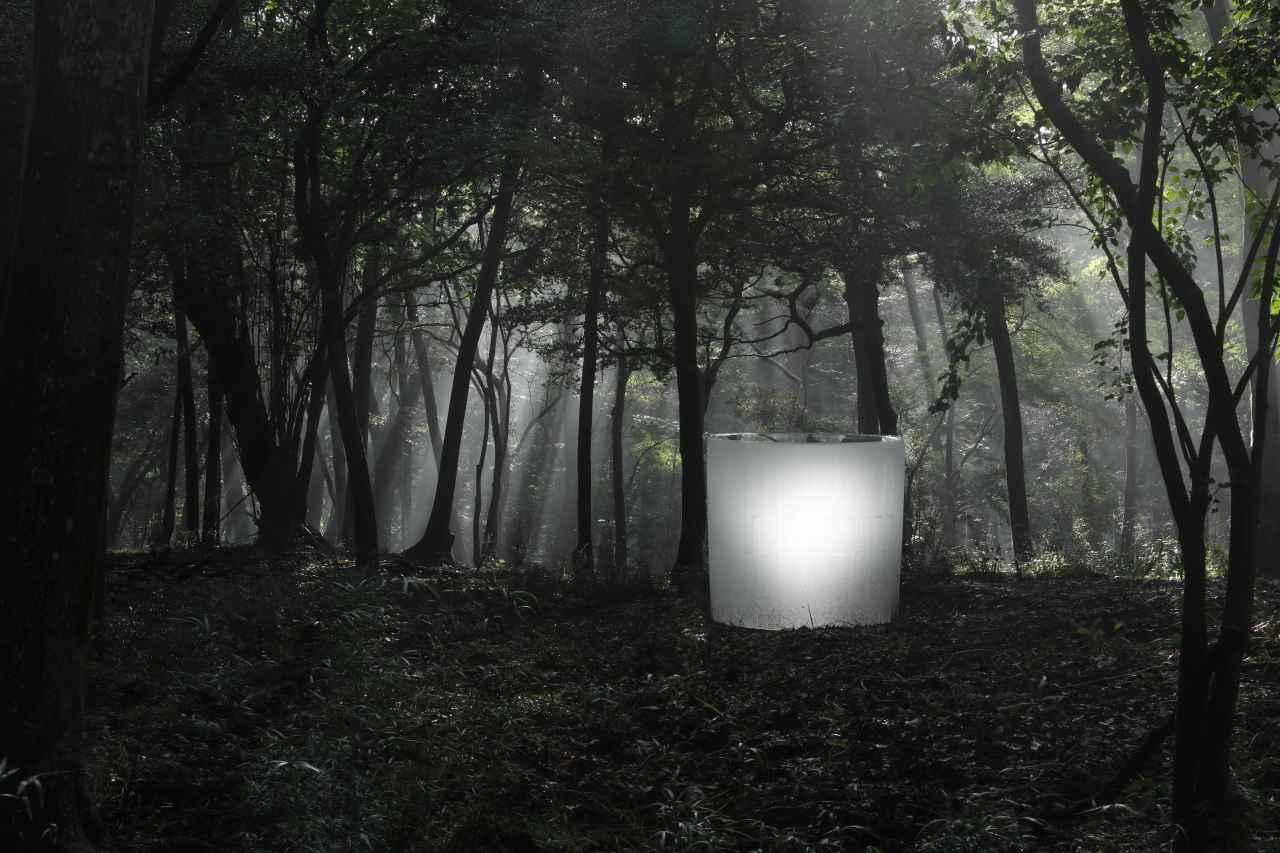 画像: 鳥葬(箱根、日本)2017-2018年 鋳放しの鋳造ガラス ポーラ美術館 © Roni Horn Photo: Koroda Takeru