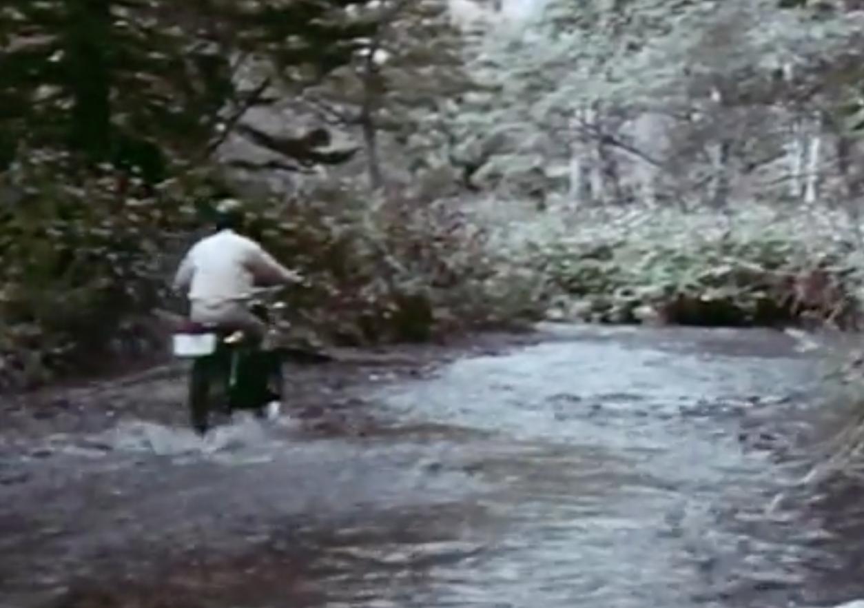 画像: 水の中もなんのその youtu.be