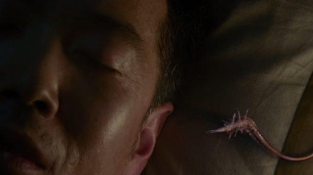 画像: どこからかやってきたパラサイトが耳から脳に侵入する kiseiju.com