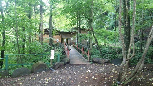 画像5: 目的地は日光・まなかの森 キャンプ&リゾート
