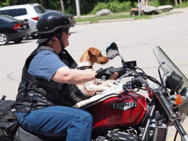 画像: 安全対策はしっかりと。 www.wroar.com