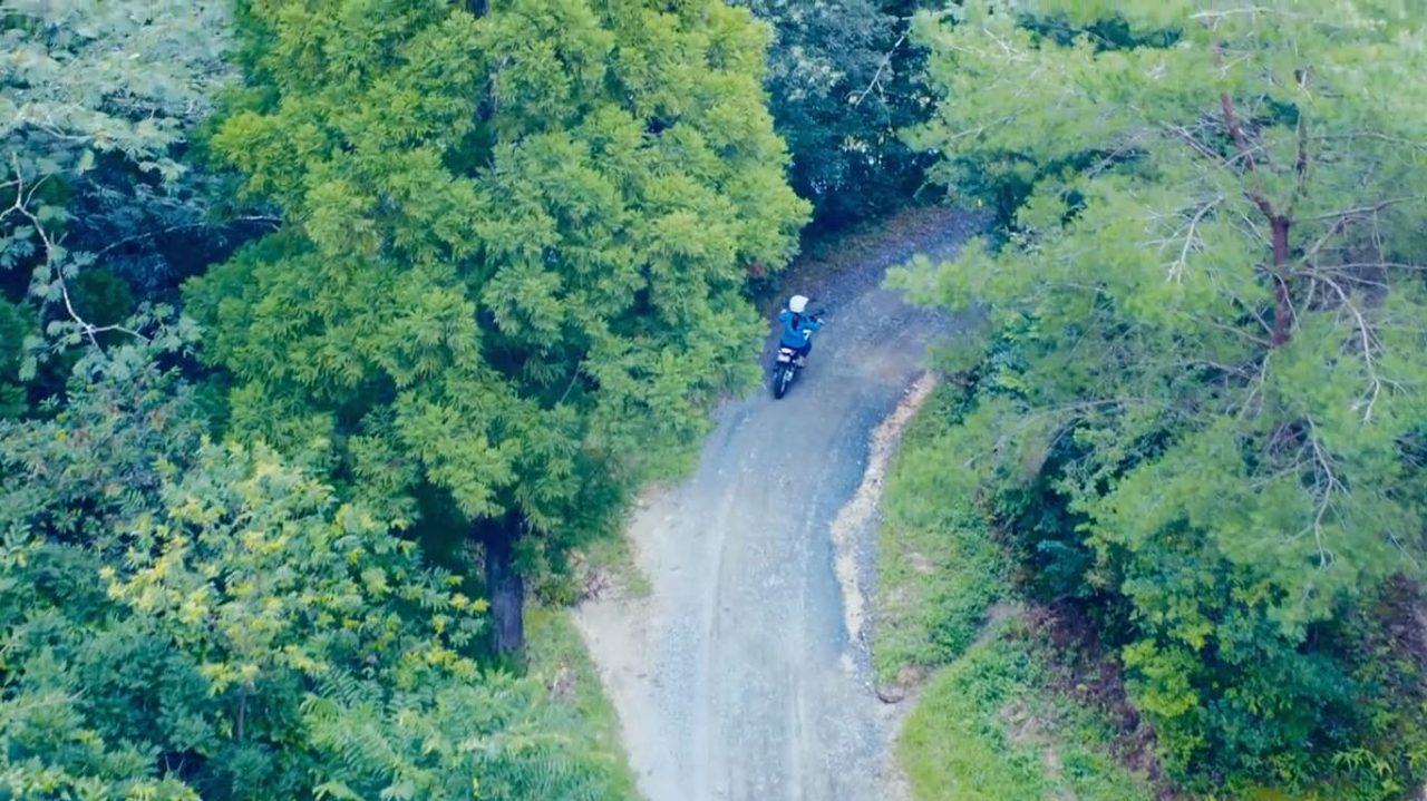 画像: 深い森の中を走る「エレクトリック・マウンテントレール PED2」