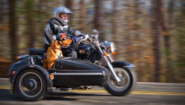 画像: 風を受けて、気持ち良さそうな表情がいいですね。 motorcyclingalabama.info