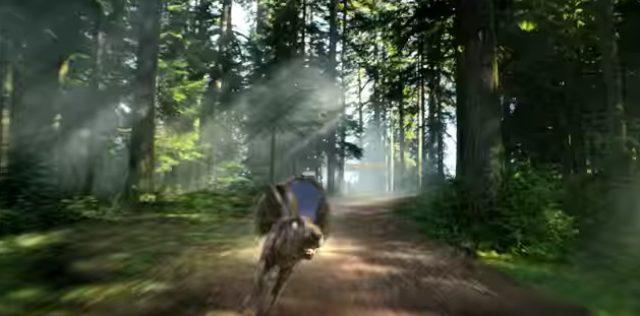画像6: www.youtube.com