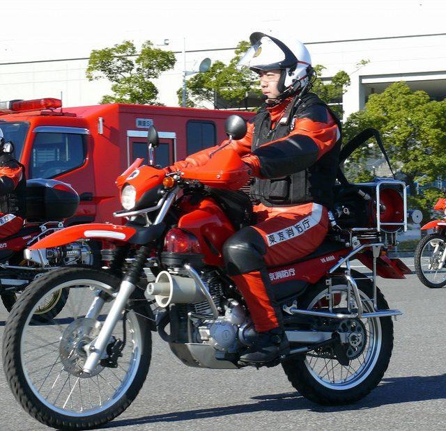 画像: tfd119.com