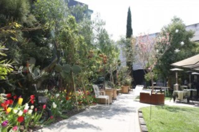 画像: from-sora | 西畠清順 seijun nishihata そら植物園 SORA BOTANICAL GARDEN project