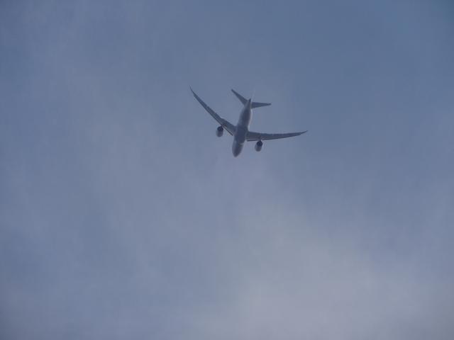 画像: 羽田空港では離陸する飛行機の真下に停船。離陸と旋回で翼がしなるのを間近でみれて感動