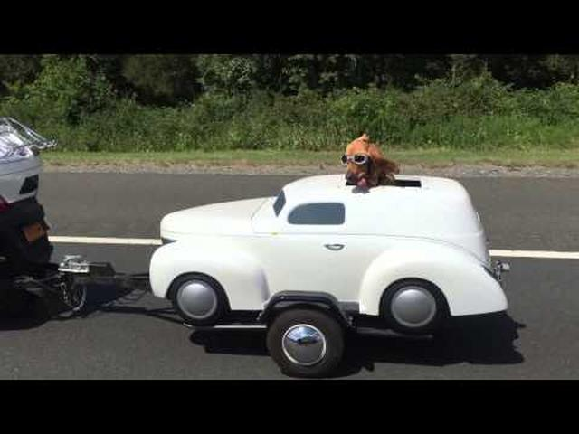 画像: Dog Has His Own Ride youtu.be