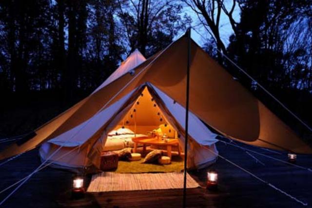 画像: 森と星空のキャンプヴィレッジ