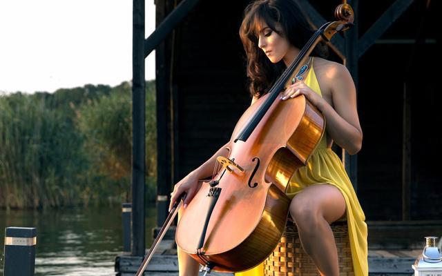 画像: Amadeus Electric Quartet - She's The One www.youtube.com