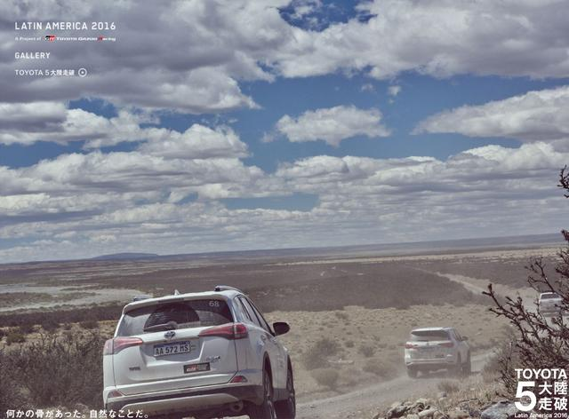 画像: 【第3位】チリ / トーレス デル パイネ 「何かの骨があった。自然なことだ。」