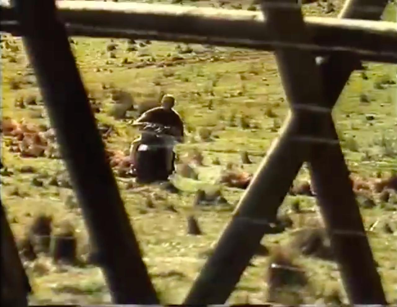画像: CMの展開は、動画でご確認していただくとして、本編同様にヒルツの行く手を、ドイツ国境の柵が阻みます。永世中立国のスイスに逃げることができれば、脱出成功なのですが・・・。 www.youtube.com