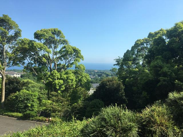 画像: 高台にあるので景色抜群!緑が目にいい!