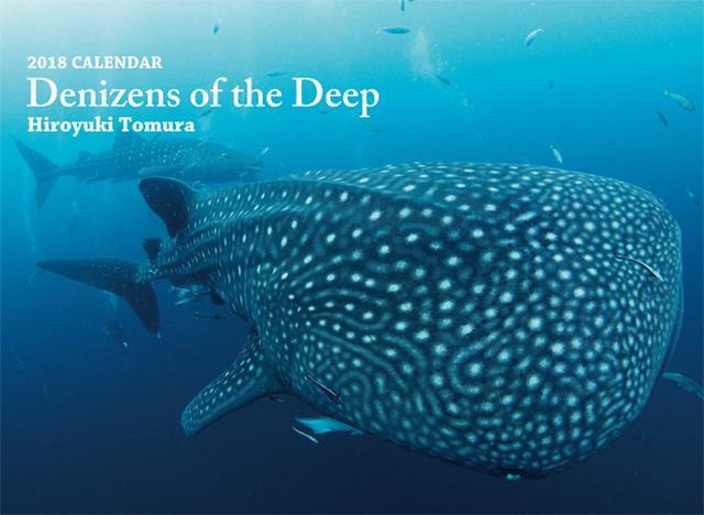 画像: カメラマン 2018カレンダーシリーズ 37 戸村裕行「Denizens of the Deep」|モーターマガジン社の通販本店サイト