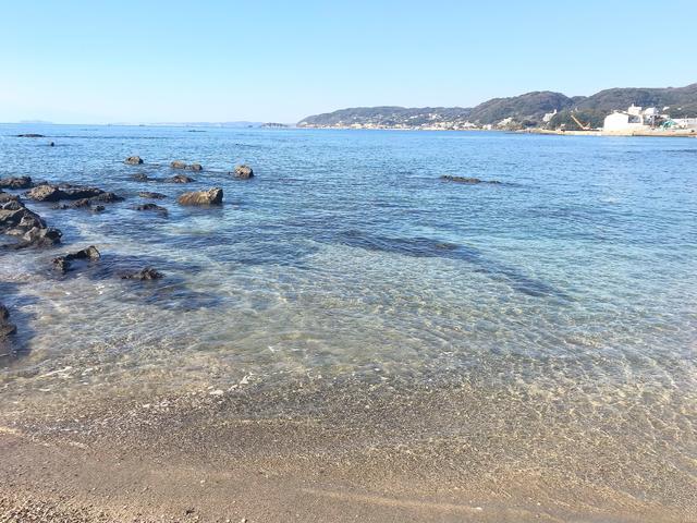 画像1: 葉山公園の綺麗な海をバックにパシャり。