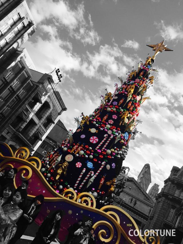 画像: これはUSJのクリスマスツリーですよ〜