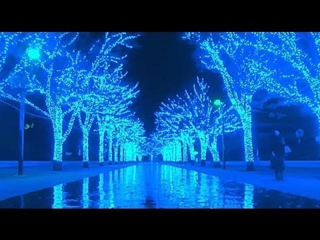 画像: 公式動画 青の洞窟 SHIBUYA -ILLUMINATION - www.youtube.com