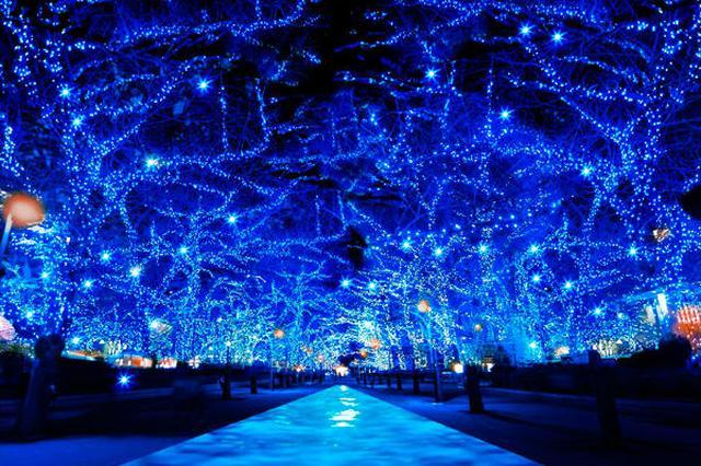 画像2: 「青の洞窟 SHIBUYA」が今年も大人気開催中☆11/22〜12/31まで渋谷の街が青一色に!