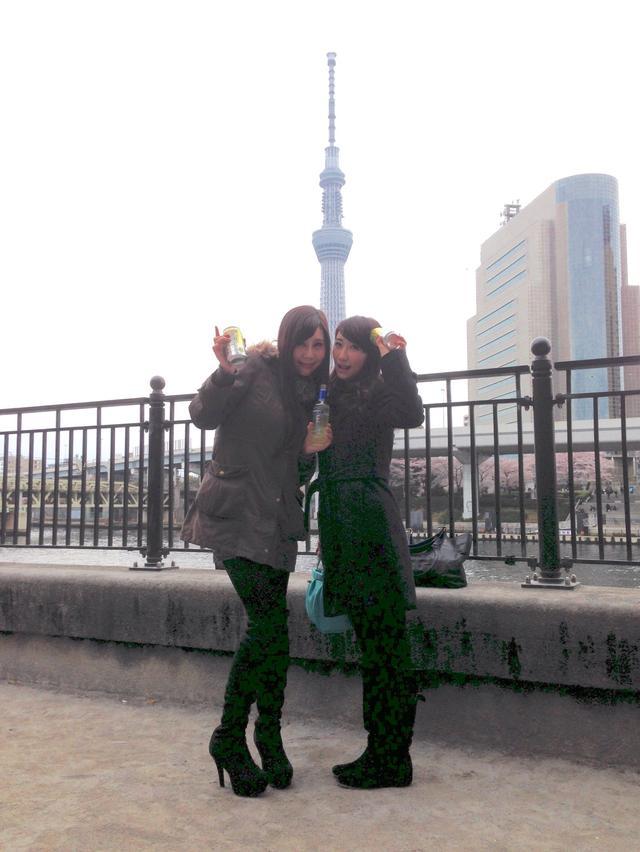 画像4: 春は桜とお酒とミク様♡お花見の計画はお早めに〜!!【水曜日のミク様】