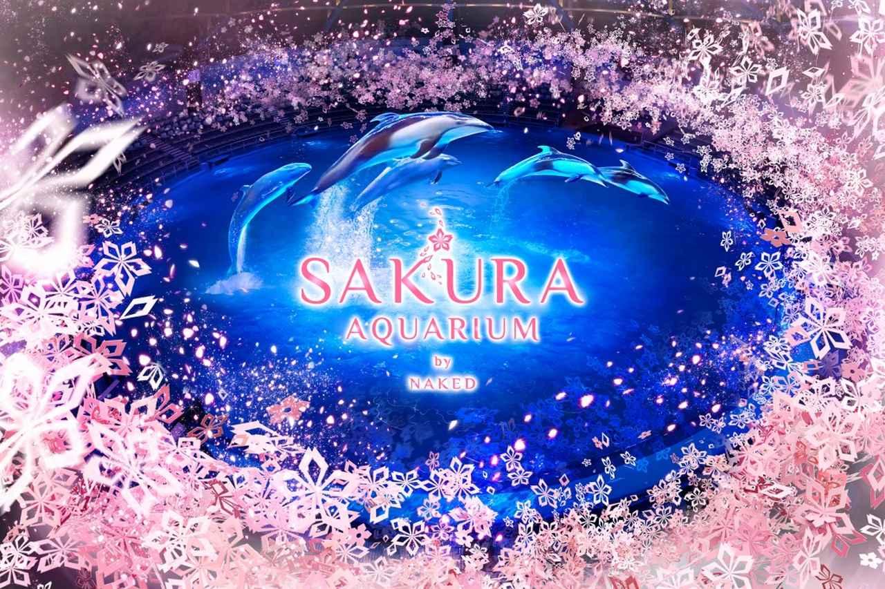 画像: www.aqua-park.jp
