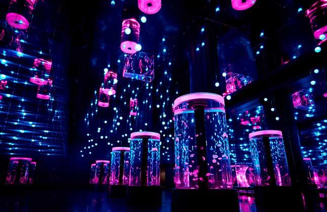 画像: 「Jellyfish Ramble」 ゆらゆら漂うクラゲと、音と光の大空間も「SAKURA AQUARIUM」バージョンに♡ www.aqua-park.jp