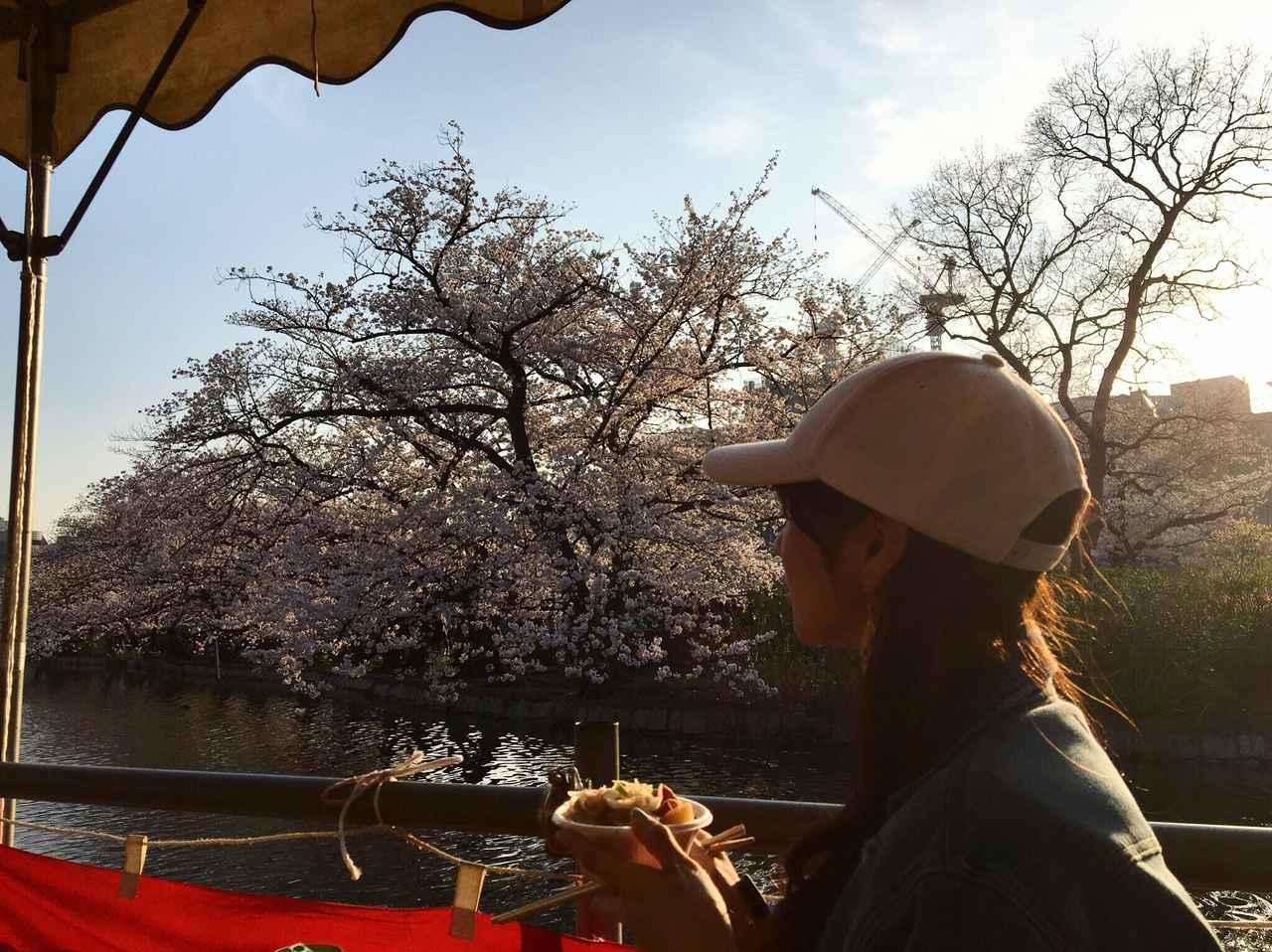画像: 桜を見ながらお酒とおつまみ。幸せ。