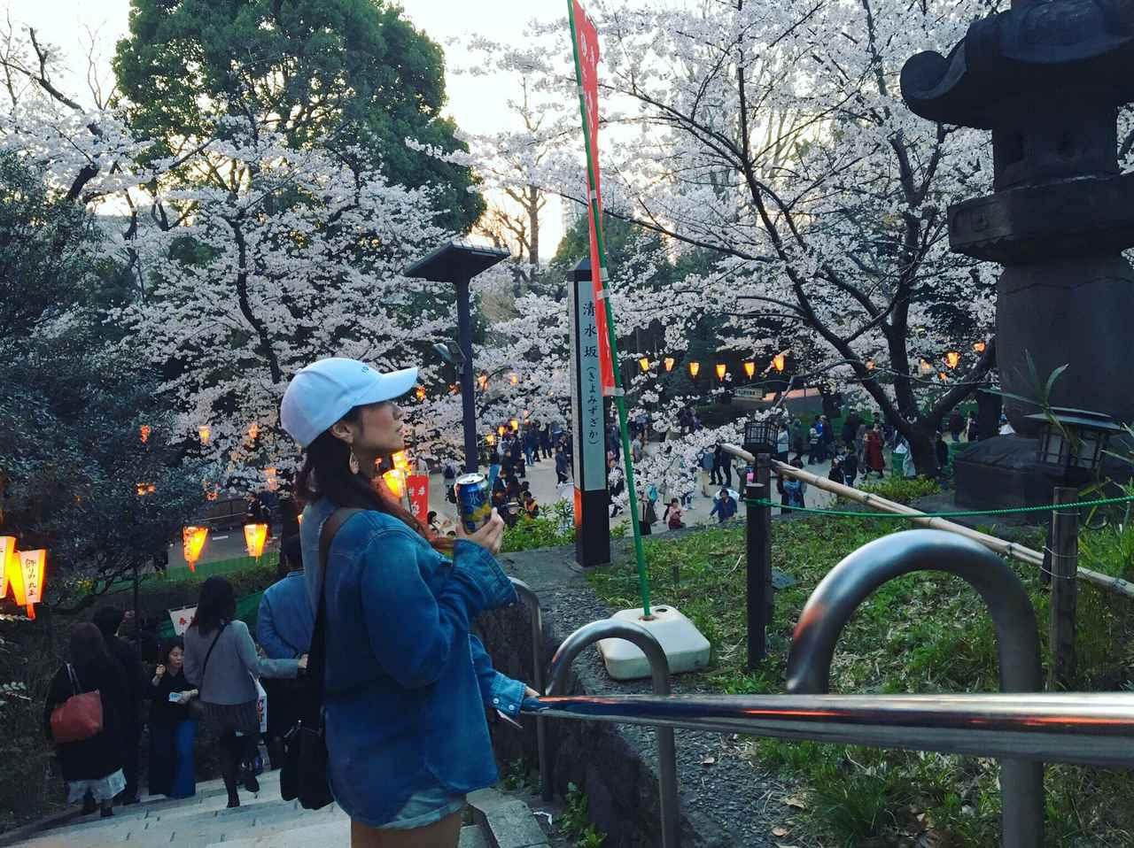 画像7: ミク様は花より団子!?今年初のお花見は◯◯へ行ってきました♡【水曜日のミク様】