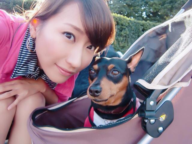 画像4: 行くなら今!ミク様的『愛犬と行く旅行』オススメスポットをご紹介〜☆【水曜日のミク様】