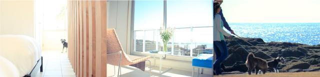 画像: ワンちゃんと泊まれるコテージ シーグラス 〈Sea Glass〉