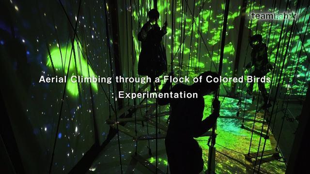 画像: Aerial Climbing through a Flock of Colored Birds: Experimentation / 色取る鳥の群れの空中吊り棒渡り:実験中 youtu.be