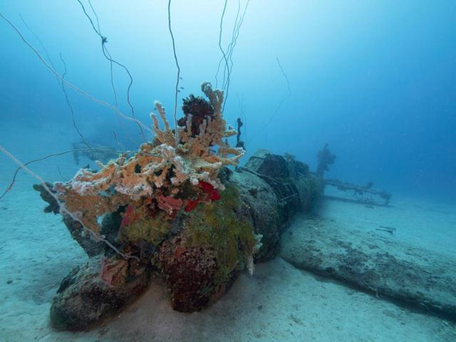 画像: プロペラに珊瑚などの付着物が付いた『天山』ーチューク(トラック諸島)