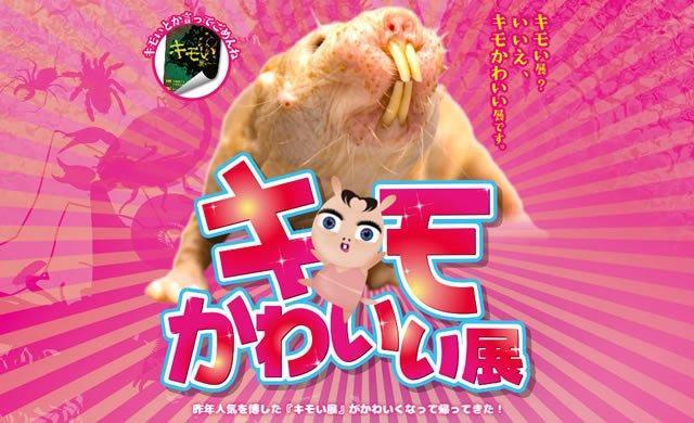 画像: kimokawaiiten.jp