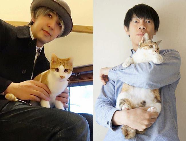 画像4: 東京ドームシティで日本最大級ホゴネコイベント!ネコ助かる猫祭り「ネコ市ネコ座」7/14-16に初開催決定。