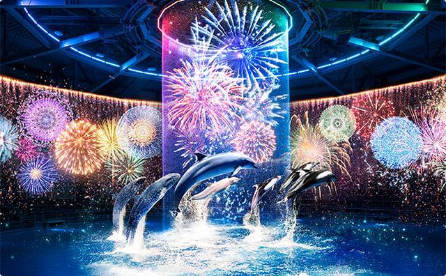 画像: 星花火-Digital Fireworks-/毎夜開催!花火アート×ドルフィンパフォーマンス。360°の音と光が会場をつつみこみます☆ www.aqua-park.jp