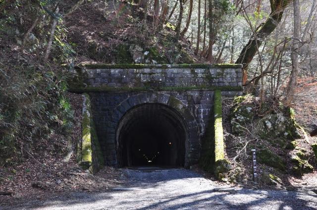画像: 天城山隧道