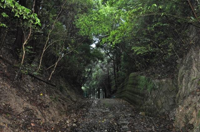 画像: 早く立ち去りたいと思った和歌山県。香ノ塔峠